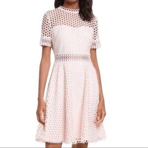Ted Baker Graycee lace dress